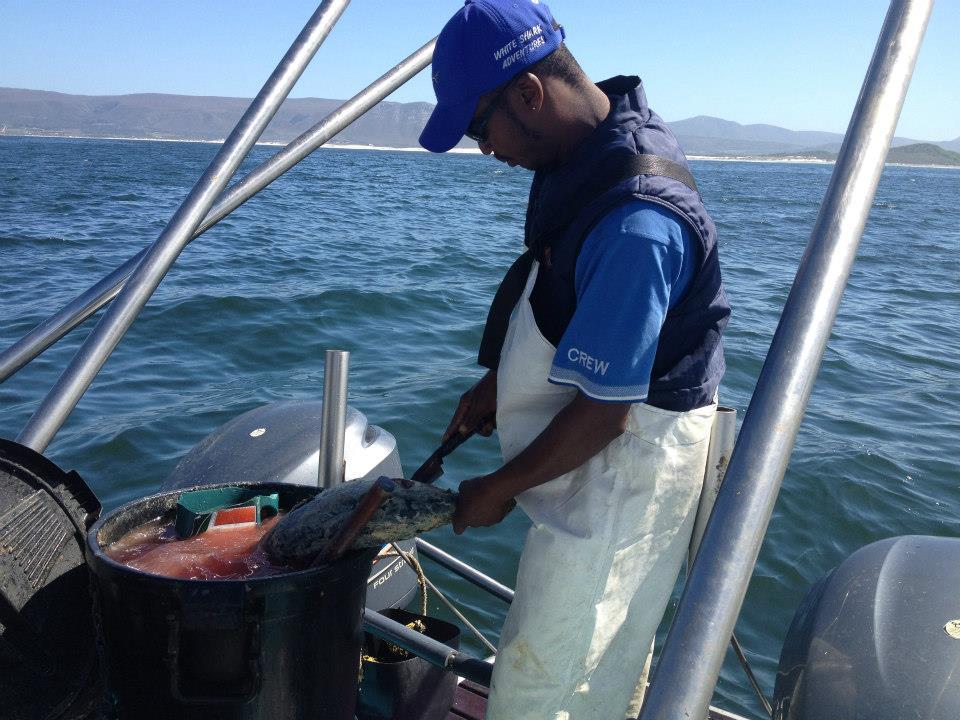 Un ragazzo dello staff prepara in un secchio un composto fatto di scarti e olio di pesce.