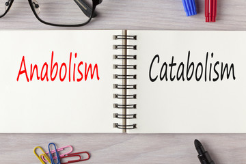 un notes con scritto anabolismo in rosso e catabolismo in blu