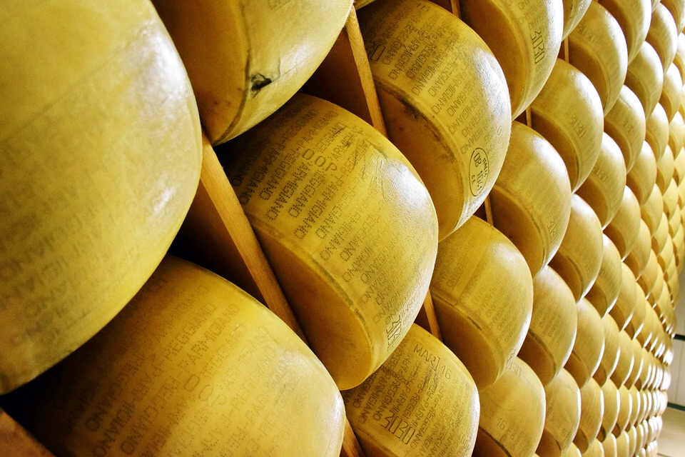 Parmesan e parmigiano - In foto uno scaffale con le forme gialle di parmigiano reggiano. In quelle in primo piano si legge il marchio DOP di denominazione di origine protetta