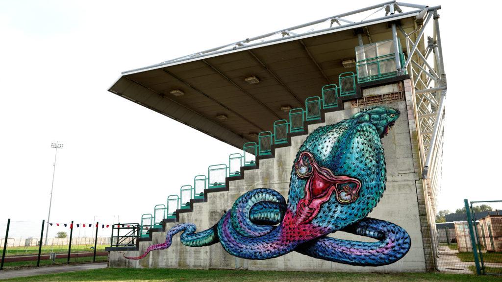 Stadio di comacchio - le gradinate dello stadio disegnate con una gigantesca piovra
