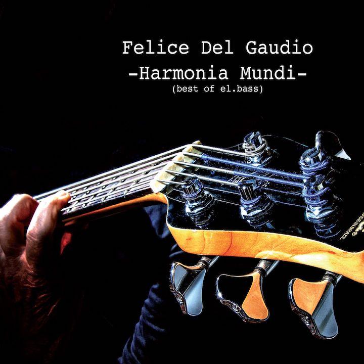 felice del gaudio  - la copertina di harmonia mundi, che ritrae il manico e la paletta di un basso