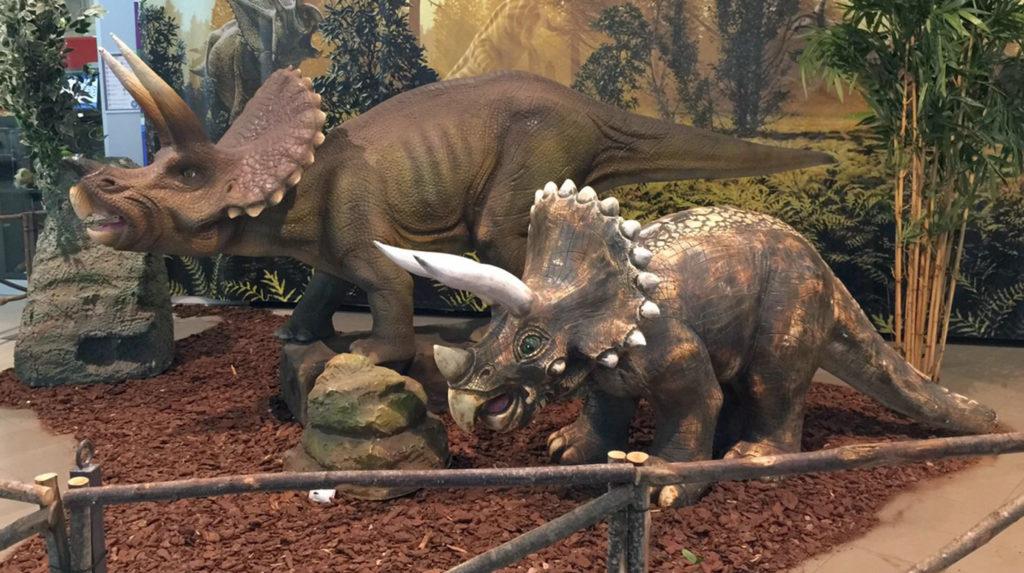 dei triceratopo con una specie di criniera dentata intorno al collo, delle corna sulla fronte e lunga conda