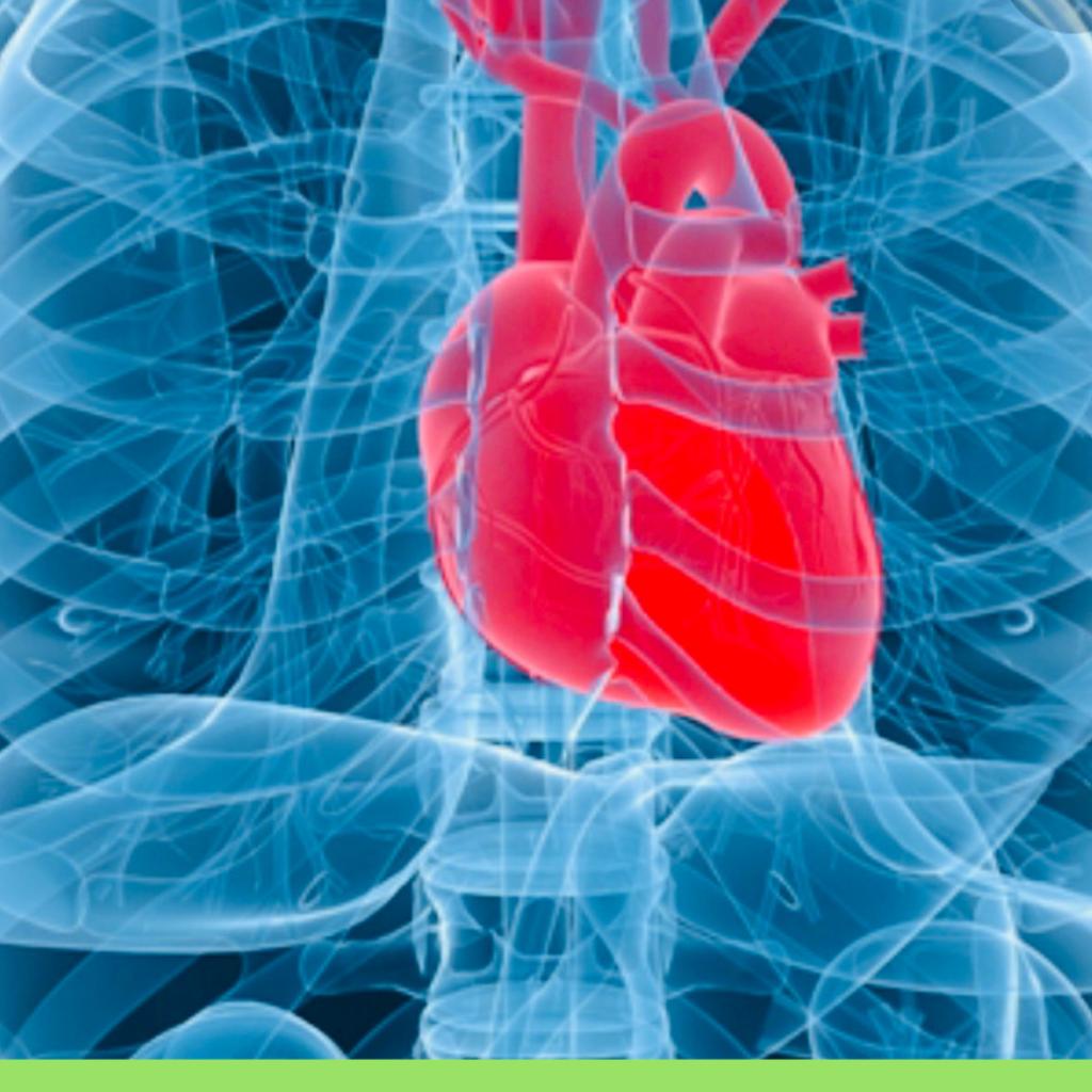 Cattiva igiene orale, rischi per il cuore.